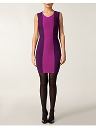 BCBG Max Azria Panel Dress