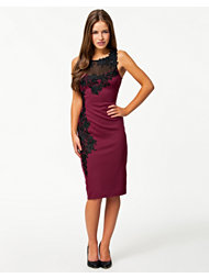 Lipsy Lace Applique Dress