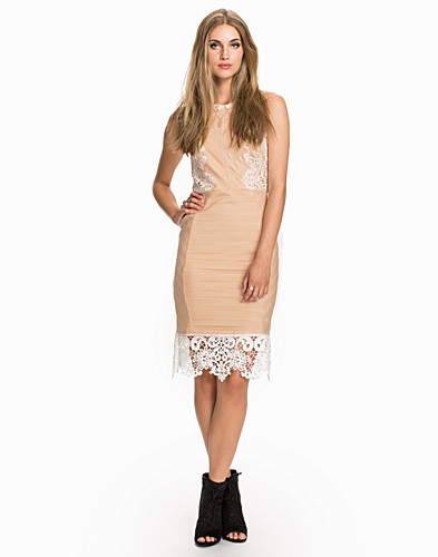 Lace Bodycon (2008705703)